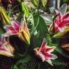 Bundle of Joy - Bouquets to Go