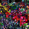 Tulips of Many Colors - Deep Blue Tonality - New York City Outdoor Markets