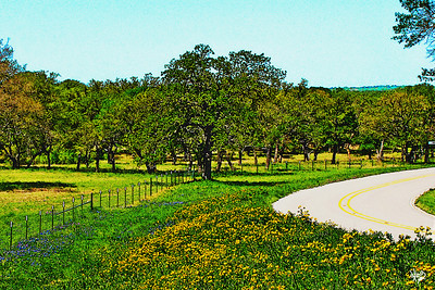 Road Dressed In Yellow, Robinson Road near Johnson City, TX