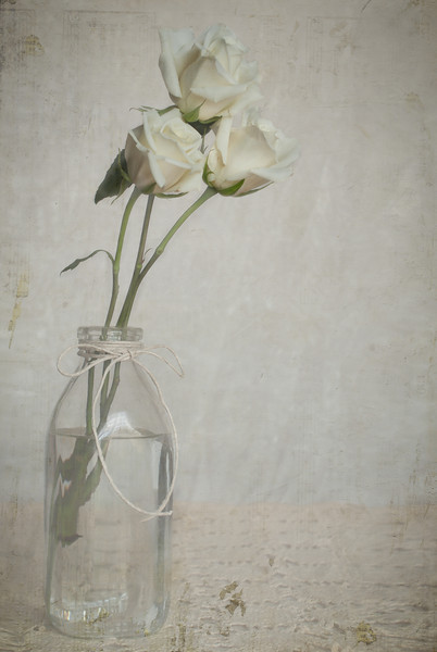 White Roses In An Old Milk Jar