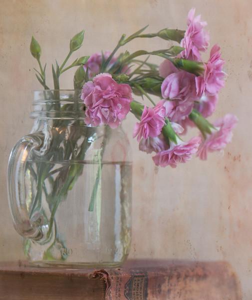 Rosie Cheeks Carnations Still Life