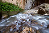 The Virgin river meets a rock wall in Zion National Park.