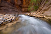 Water rushing by in the Narrows in Zion National Park.
