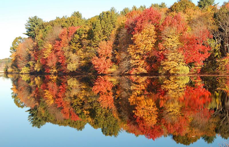 133 - Fall Foliage, MA
