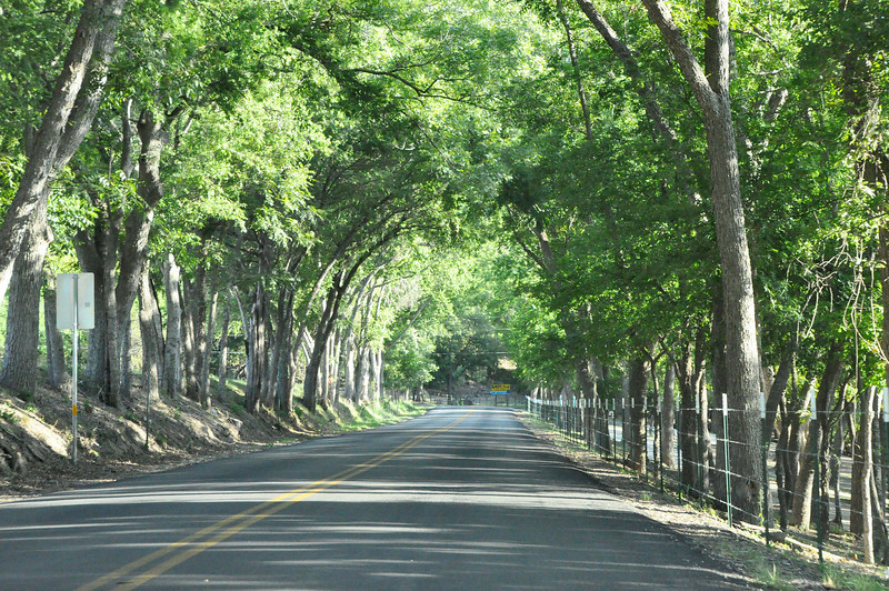 317 - Country Road, Texas