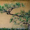 Pine Branch,  Japan