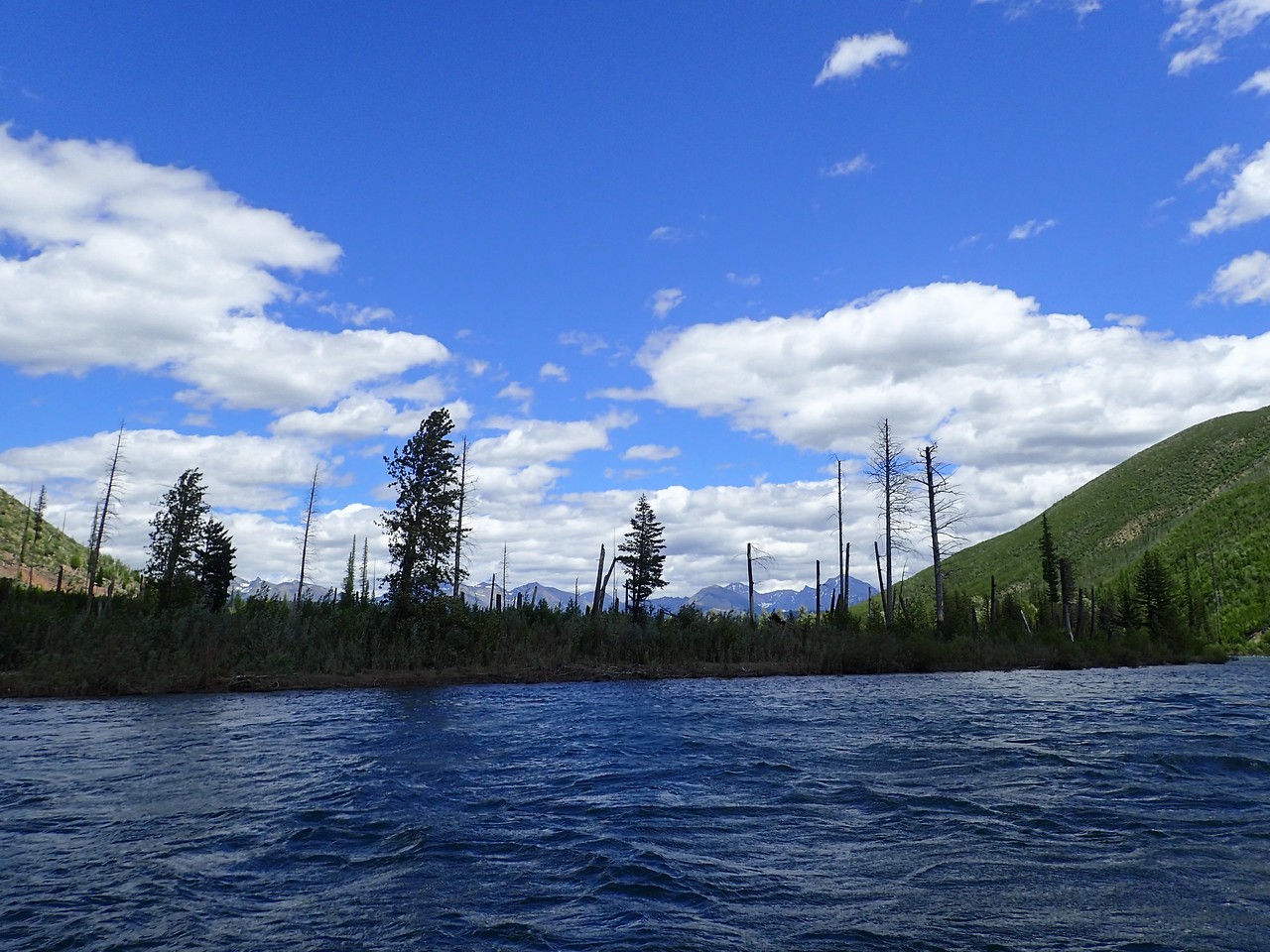 Floating the North Fork from Polebridge to Big Creek with Regi
