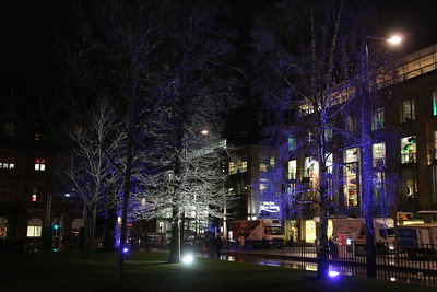 St Andrew Square with the new blue trees....