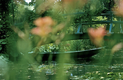 41  Monet's garden 2