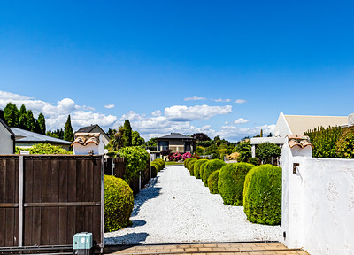 Flowers from Wanaka, Otago, New Zealand, Driveway with white pebbles and rounded evergreen hedge.