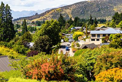 Flowers from Wanaka New Zealand, Flowers in a neighborhood of Wanaka, Otago, New Zealand