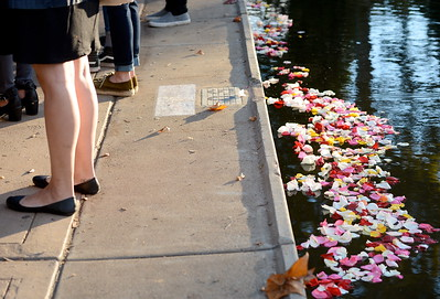 """Flower petals are seen in Sycamore Pool during the """"Flowers on the Creek"""" Domestic violence victims remembrance at the One Mile Recreation Area of Bidwell Park in Chico, Calif. Thursday, Oct. 4, 2018.   (Bill Husa -- Enterprise-Record)"""