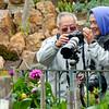 Photographing Dahlias