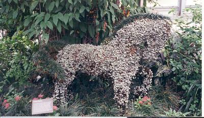 1999-7-1 Plant Horse