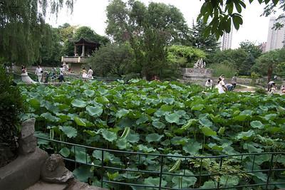 20110703_1526_4192 Xi'an Botanical Gardens