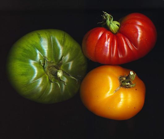 2011 fruits of the garden
