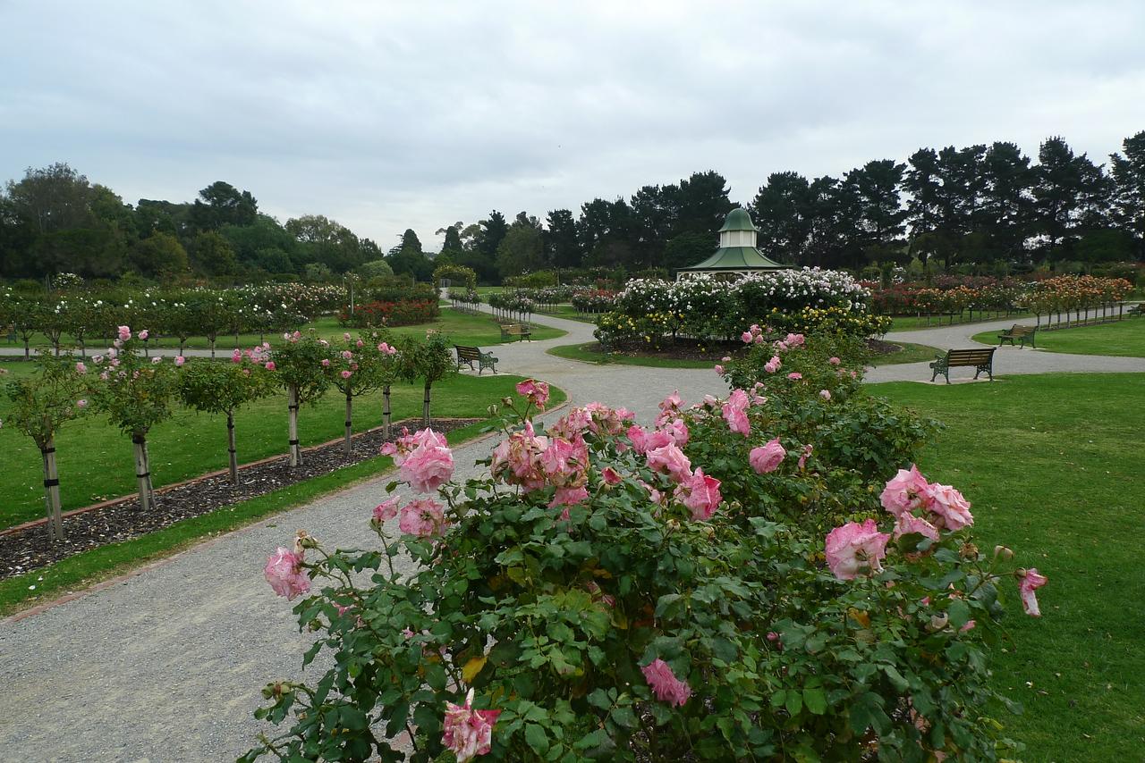 20120419_1305_6592 State Rose Garden, Werribee