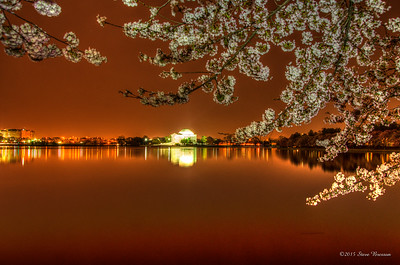2013/04/09 Cherry Blossoms at Tidal Basin, Wash DC