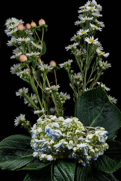 2014-02 Flower mix