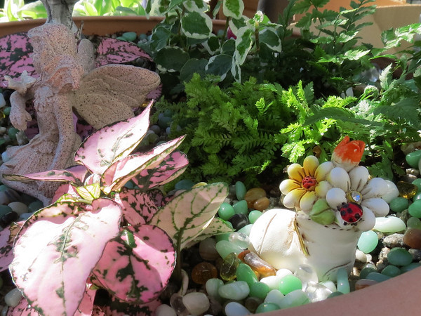 The Faery Garden that Becky made for her Mom<br /> for Mother's Day.
