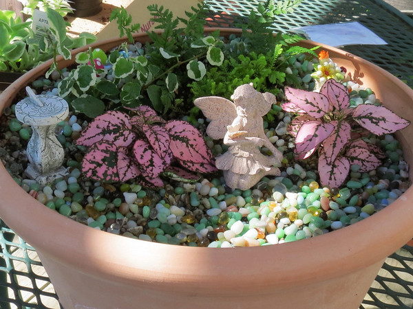 The Faery Garden that Becky made for her Mom for Mother's Day.
