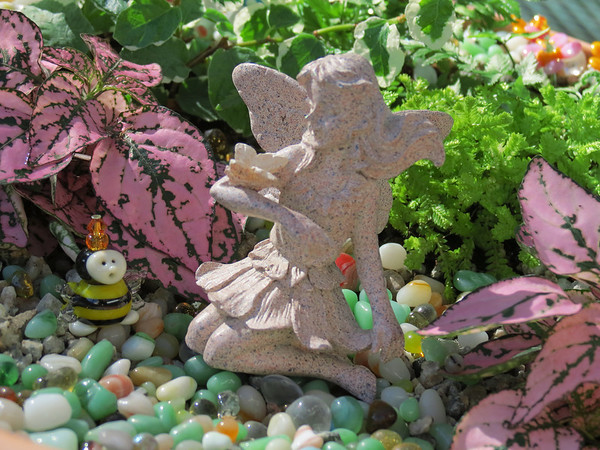 The Faery Garden that Becky made for her Mom<br /> for Mother's Day. Faery and Bee