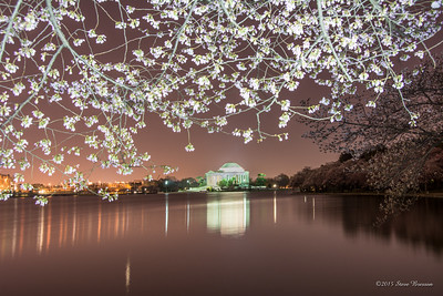 2014/04/09 Cherry Blossoms at Tidal Basin, Wash DC