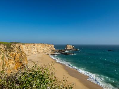 Panther Beach & Wild Radish (Raphanus raphanistrum) (foreground). Santa Cruz, CA, USA