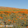 antelope valley-12