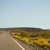 American Highways lined with wildflowers, Arizona