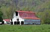 Spring in pastoral Western NC, near Asheville <br /> ~ Images by Martin McKenzie ~ All Rights Reserved