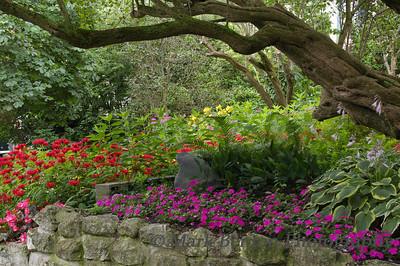 Wooded Rock Garden