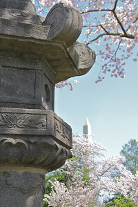 The Japanese lantern and Washington Monument.