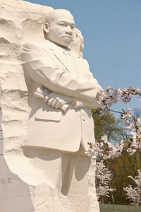 Martin Luther King Monument with a few cherry blossoms!
