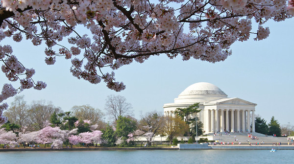 Another view of the Jefferson Memorial.