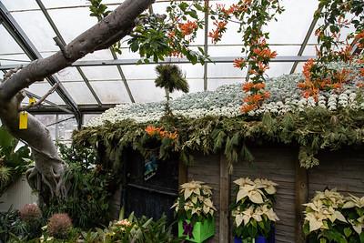 Christmas Flower Show 2016