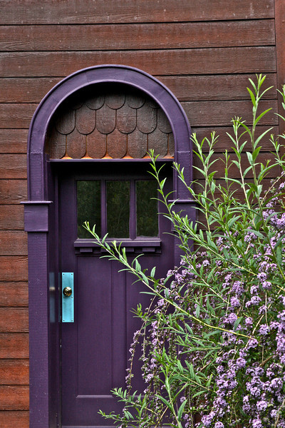 STUDIO DOOR WITH BUDDLEIA ALTERNIFOLIA