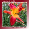 00aFavorite 'Open Hearth' [gradient borders, text] - Duke Gardens