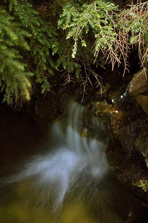 waterfall 91 butchart small