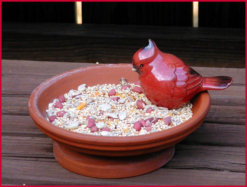 Adorable little ceramic cardinal I picked up at Erin's Meadow in the gift shop. <br /> less than $5. The feeder is just clay saucers I had lying around.