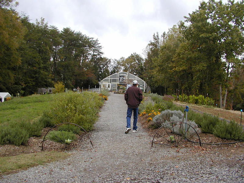 Kenny walks up the main path to the greenhouses.<br /> The walkways are lined with the most beautiful herbs and flowers.
