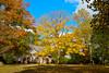 141016-FallFoliage-003