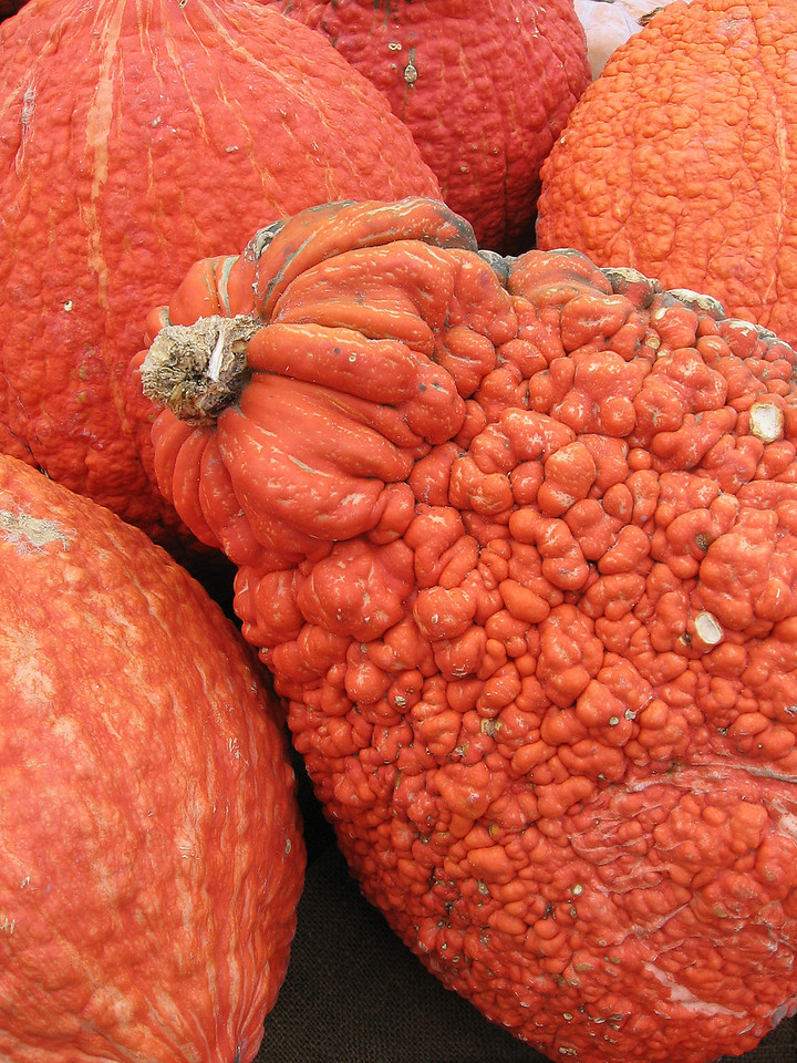 Reddish-orange pumpkins