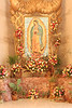 7533- Our Lady of Guadalupe