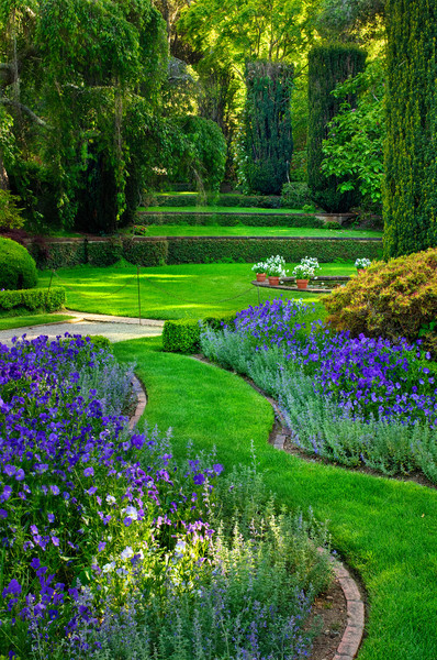 Filoli-Gardens-Woodside-California-Harrison-Purple Gardens_DSC0707