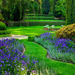 Filoli-Gardens-Woodside-California-Harrison-Purple Gardens_DSC0707