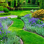 """A Walk Through Filoli Gardens in Spring""  Filoli Gardens in Woodside, California"