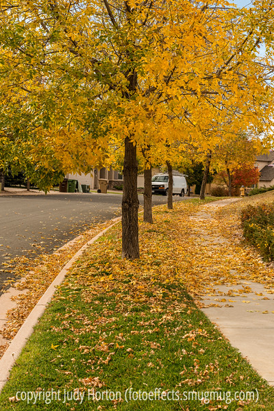 Autumn in Colorado Springs