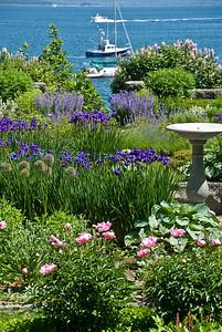 Maine 2012 flora sea garden
