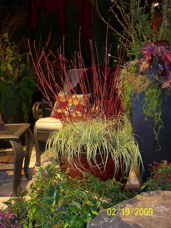 Flower & Garden Show 2009